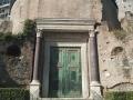 Roman Forum (10)