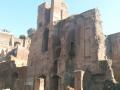 Roman Forum (8)
