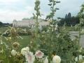 Belvedere Palace (10)