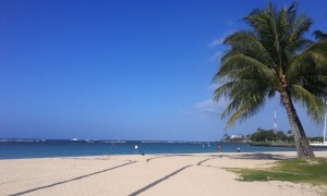 Blue skies at Ala Moana Beach on my last day