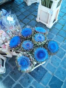 artichokes in bloom in market square